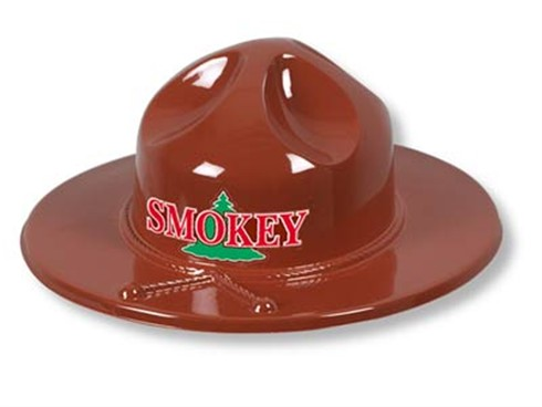 Stock Smokey Forest Ranger Hat